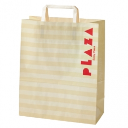 Regular shopping bag 1996~